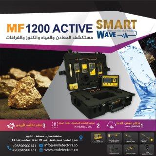 كاشف الذهب المعادن والمياه متعدد الوظائف والمهام ( إم إف 1200 أكتيف )