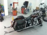 Harley Davidson , Delux Softtail