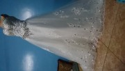 فستان زفاف إيجار 80ريال